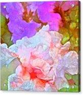 Iris 60 Acrylic Print
