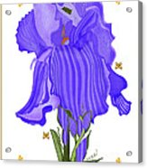 Iris And Old Lace Acrylic Print