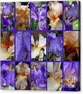 Iris Collage Acrylic Print