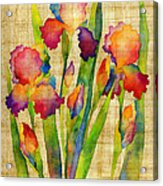 Iris Elegance On Yellow Acrylic Print
