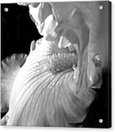 Iris Flower In Black And White Acrylic Print