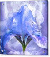 Iris - Goddess In The Moonlite Acrylic Print