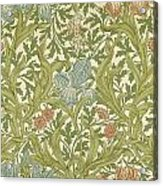 Iris Pattern Acrylic Print