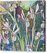 Irises And Doodles Acrylic Print