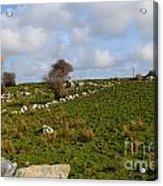 Irish Farms And Fields Acrylic Print