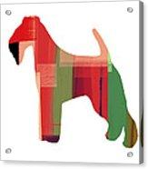 Irish Terrier Acrylic Print by Naxart Studio