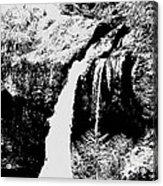 Iron Creek Falls Bw Acrylic Print