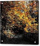 Is This The Way Out Acrylic Print