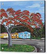 Isabela Puerto Rico Acrylic Print