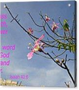 Isaiah 40 8 Acrylic Print