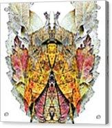 Isaosam Acrylic Print
