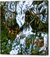 Isinglass Acrylic Print