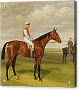 Isinglass Winner Of The 1893 Derby Acrylic Print by Emil Adam