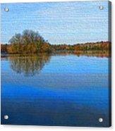 Island In The Pond Acrylic Print