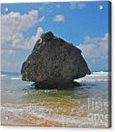 Island Rock Acrylic Print