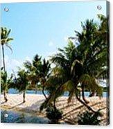 Isle @ Camana Bay Acrylic Print