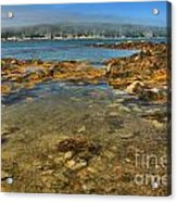 Isle Au Haut Beach Acrylic Print by Adam Jewell