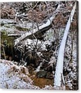 Ist Snow Of The Season Acrylic Print