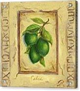 Italian Fruit Limes Acrylic Print