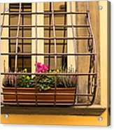 Italian Window Box Acrylic Print