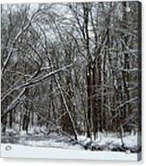 Its A Beautiful Winter Acrylic Print