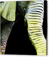 It's A Long Story - Unique Elephant Art Acrylic Print by Sharon Cummings