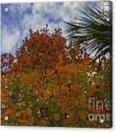 It's Fall Ya'll Acrylic Print