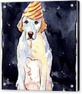 It's Your Birthday Acrylic Print by Molly Poole