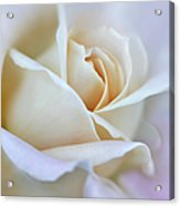 Ivory And Pink Abstract Rose Flower Acrylic Print