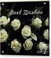 Ivory Roses Greeting  Acrylic Print