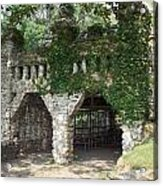 Ivy Covered Stone Wall Acrylic Print