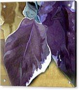 Ivy Leaves Acrylic Print