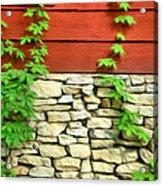 Ivy On Stone And Wood Acrylic Print