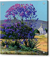 Jacaranda Holy Ghost Church In Kula Maui Hawaii Acrylic Print