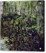 Jack Kell's Woods Acrylic Print