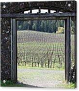 Jack London Ranch Winery Ruins 5d22132 Acrylic Print