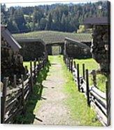 Jack London Ranch Winery Ruins 5d22180 Acrylic Print