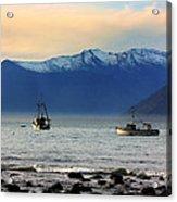 Jackson Bay South Westland New Zealand Acrylic Print
