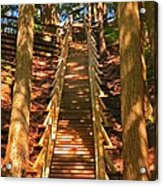 Jacobs Ladder Acrylic Print