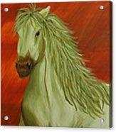 Jade Horse Acrylic Print
