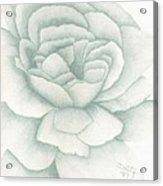 Jade Rose Acrylic Print