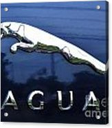 A Gift For Dads And Jaguar Fans Acrylic Print
