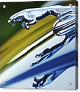 Jaguar Car Hood Ornament Acrylic Print