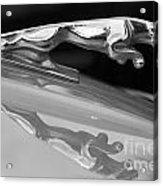 Jaguar Car Hood Ornament Reflection Bw Acrylic Print
