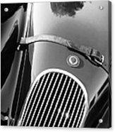 Jaguar Hood Emblem - Grille Acrylic Print by Jill Reger