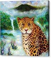 Jaguar In The Mist Acrylic Print