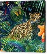Jaguar Meadow Acrylic Print