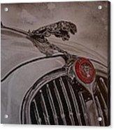 Jaguar Mk II Bonnet Acrylic Print