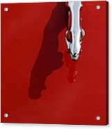 Jaguar Xjs Hood Ornament Abstract Acrylic Print by Tim Gainey