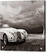 Jaguar Xk150 - Admiring The View Acrylic Print